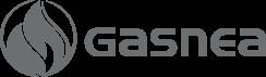 gasnea